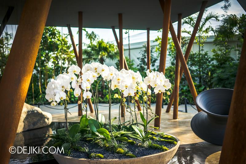 Singapore Garden Festival 2014 at Gardens by the Bay - Sacred Grove 2