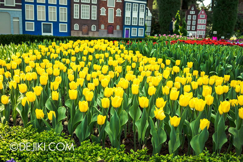 Gardens by the Bay - Tulipmania 2014 - 27