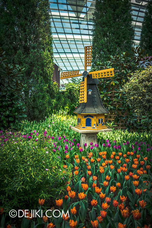 Gardens by the Bay - Tulipmania 2014 - 16