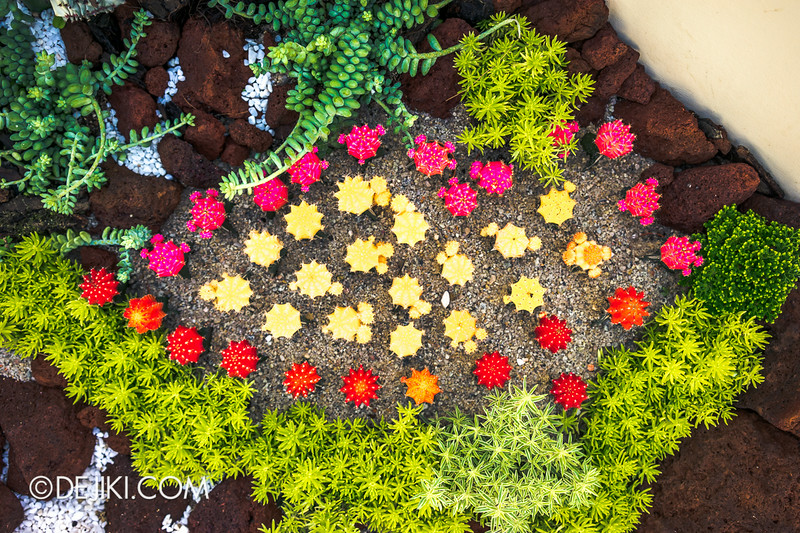Singapore Garden Festival 2014 at Gardens by the Bay - Community in Bloom Displays 9