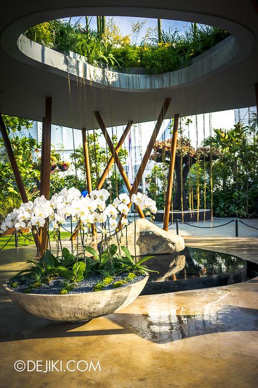 Singapore Garden Festival 2014 at Gardens by the Bay - Sacred Grove 3