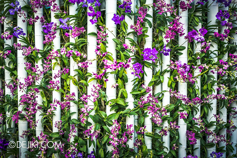 Gardens by the Bay - Orchid Extravaganza - Columns