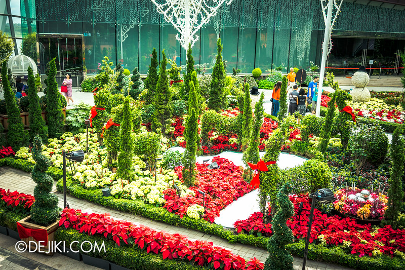 Gardens by the Bay - Yuletide in the Flower Dome - Festive Flower Field