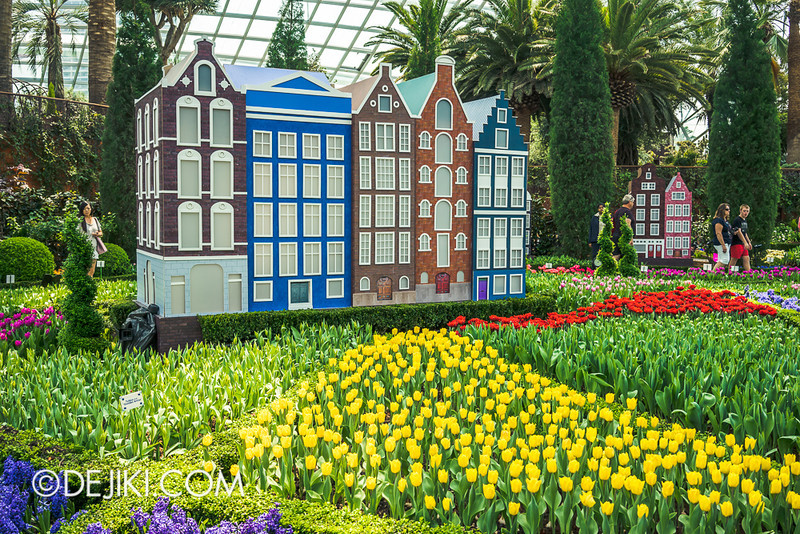 Gardens by the Bay - Tulipmania 2014 - 29