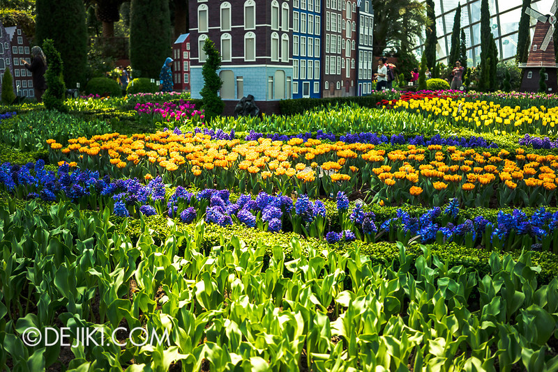 Gardens by the Bay - Tulipmania 2014 - 23