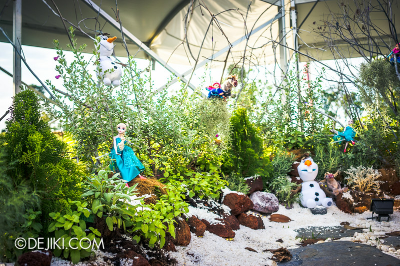 Singapore Garden Festival 2014 at Gardens by the Bay - Community in Bloom Displays 15