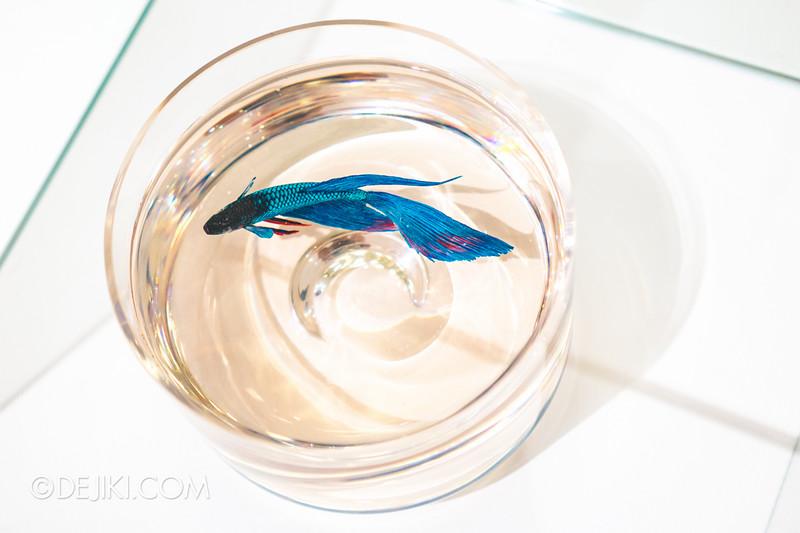 K+ gallery - keng lye: Alive without breath / Blue Beauty