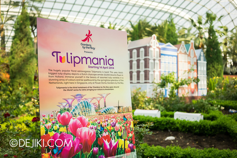 Tulipmania - Coming Soon!