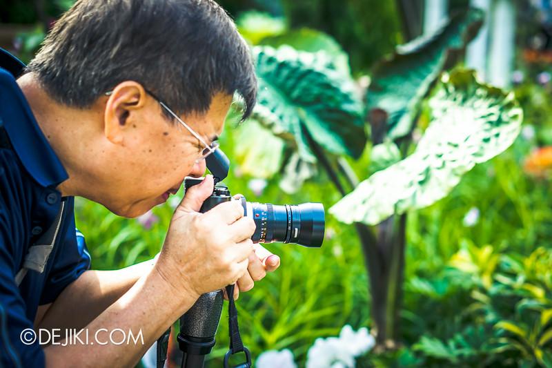 Gardens by the Bay - Orchid Extravaganza - Leica Macro-Elmar