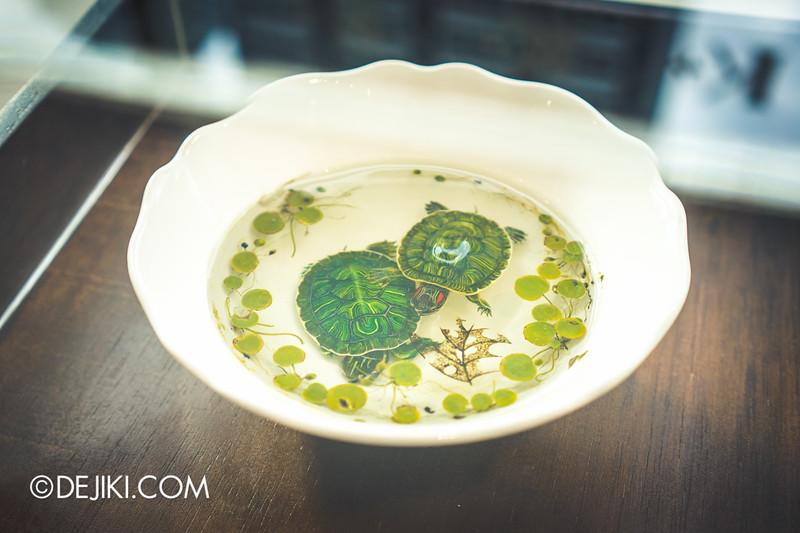 K+ gallery - keng lye / tortoises