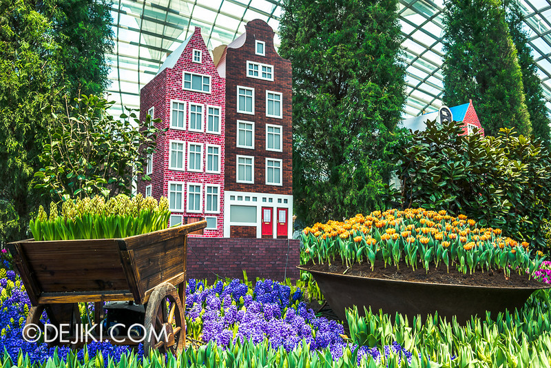Gardens by the Bay - Tulipmania 2014 - 12 A