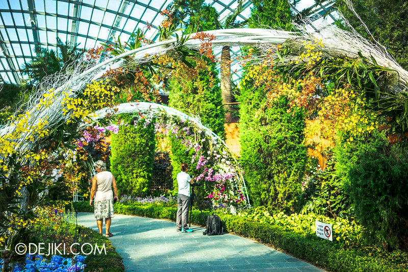 Gardens by the Bay - Orchid Extravaganza - The archs