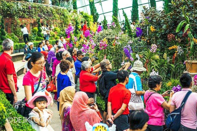 Gardens by the Bay - Orchid Extravaganza - The Path behind the Field