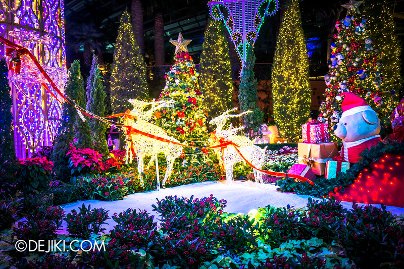 Gardens by the Bay - Winter Wonderland 2014 - Yuletide in the Flower Dome